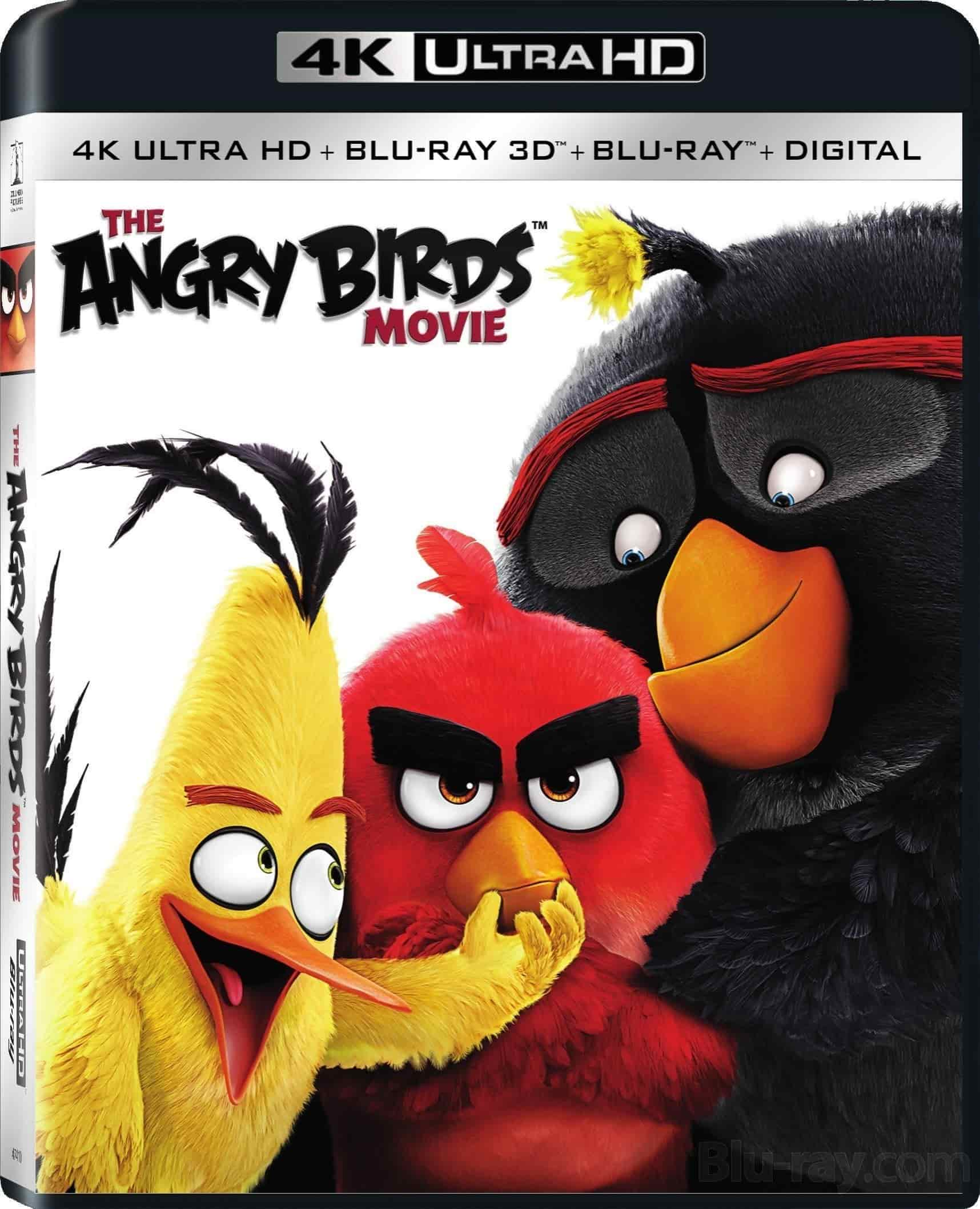 Angry Birds 4K 2016 Ultra HD 2160p » 4K Movies, Download Ultra HD 2160p