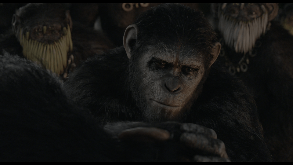 Dawn of the Planet of the Apes 4K 2014 Ultra HD 2160p