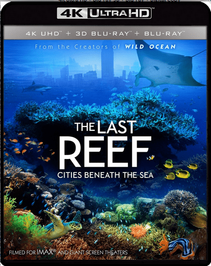 The Last Reef Cities Beneath the Sea 4K 2012 Ultra HD 2160p